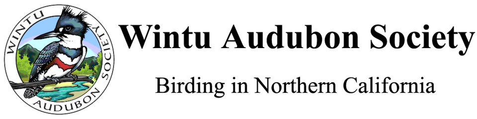 Wintu Audubon Society