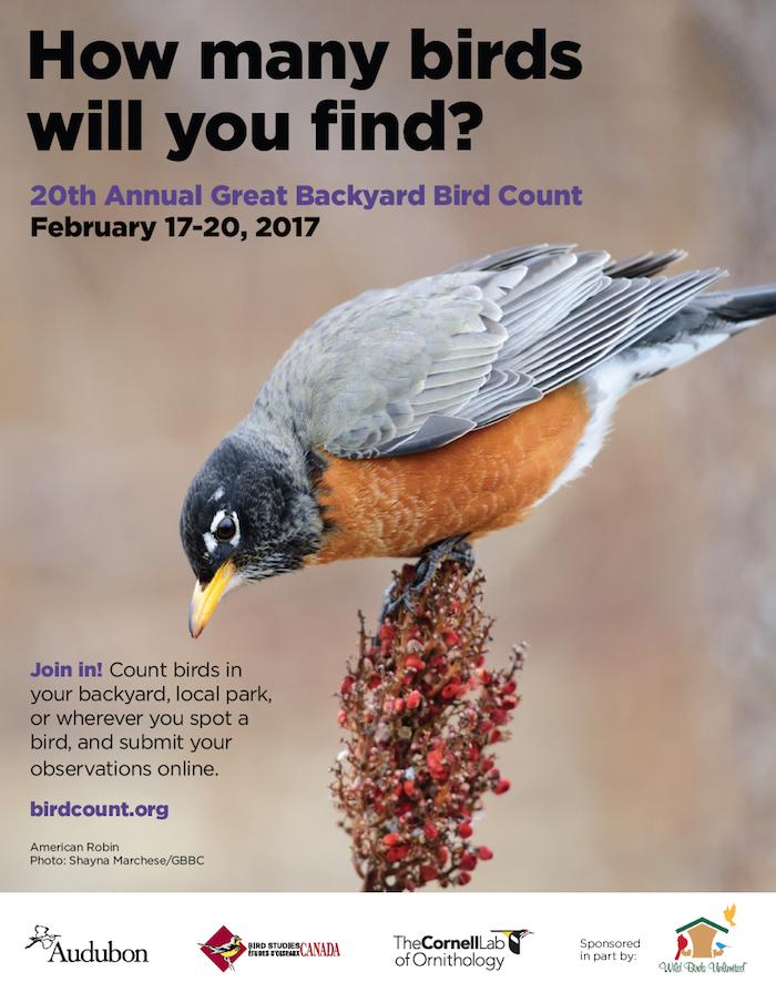 2017 Great Backyard Bird Count