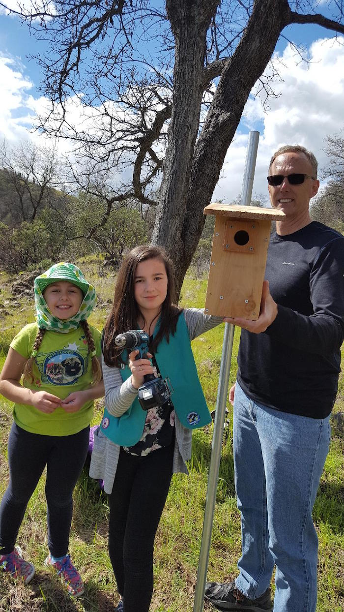 Girl Scouts Installing Bluebird Boxes