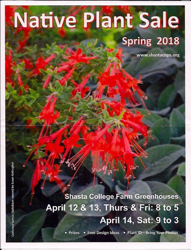 Native Plant Sale 2018